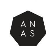 ANAS Company